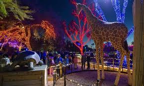 phoenix zoo lights tickets zoo lights phoenix groupon best image konpax 2017