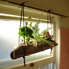 top 25 1000 ideas about hanging herb gardens on pinterest herbs