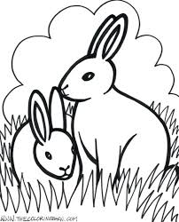 coloring pages farm animal coloring pages farm animals coloring