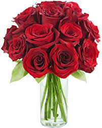 Red Rose Bouquet Amazon Com 24 Long Stem Red Roses Hand Tied Bouquet No Vase