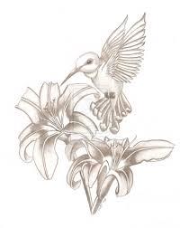 flowers and hummingbird sketch