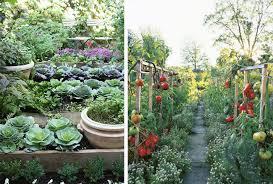 fresh inspiration design vegetable garden t8ls com