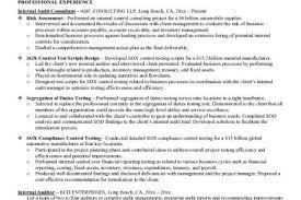 Internal Auditor Resume Sample by Internal Resume Template Reentrycorps