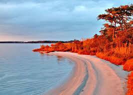 Delaware beaches images Delaware beaches rehoboth beach bethany beach dewey beach lewes jpg