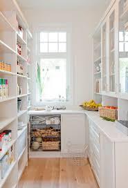 Kitchen Closet Pantry Ideas Best 25 Kitchen Pantry Design Ideas Only On Pinterest Kitchen