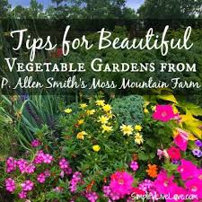 Gardening Tips For Summer - your guide to summer gardening success through the heat