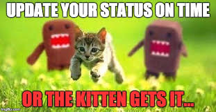 Domo Meme - kittens running from domo latest memes imgflip
