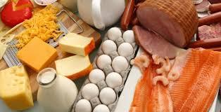 alimentazione ricca di proteine una dieta ricca di proteine aiuta a perdere peso oldeconomy