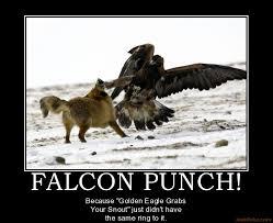 Falcon Punch Meme - falcon punch rise up pinterest falcons meme and memes