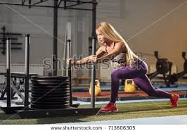 prowler press the site of prowler stock images royalty free images vectors