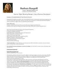 Senior Marketing Manager Resume Sample by Senior Sales And Marketing Manager Resume