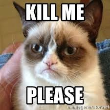 Please Kill Me Meme - kill me please grumpy cat meme generator