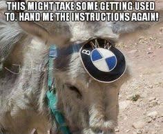 Funny Donkey Memes - bmw f76 79 cargo donkey bmw pinterest bmw