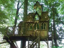 images about tree houses ziplines on pinterest treehouse and