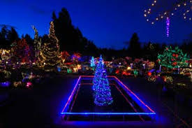commercial led tree lights nobby design outdoor led christmas lighting commercial spiral trees