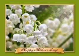 mothers day flower cards u2013 art photo web studio