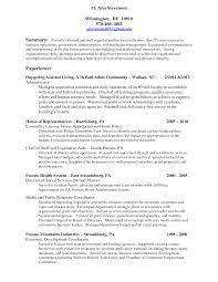Resume Sample Executive by Resume Executive Summary Free Resume Example And Writing Download