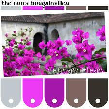 paint color ideas dennas and idolza