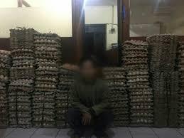 design studium mã nchen jual ribuan telur busuk di pasar bogor seorang pria ditangkap