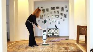 Capture Carpet And Rug Dry Cleaner How To Dry Clean Your Rugs U0026 Carpets Youtube