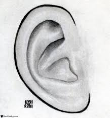 how to sketch an ear finalprodigy com
