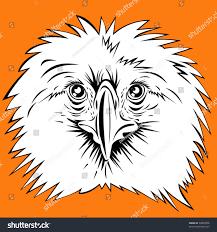 philippines eagle tattoo philippine eagle head stock vector 34039066 shutterstock