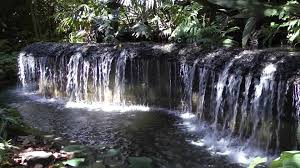 Botanical Gardens In Singapore by Waterfall Inside The Singapore Botanic Gardens Youtube