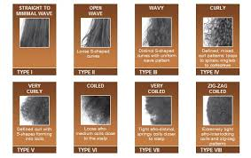 Hair Types by Black Hair Types Discover American Hair Typing Bwbc