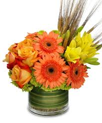 add fall flowers to your halloween parties and events u2013 allen u0027s