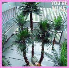palm tree canada popular indoor or outdoor decorative artificial