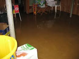 basement flooding what you need to know delta disaster services