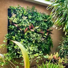 homelife 10 best plants for vertical gardens vertical gardens vertical garden refarmers aquaponic vertical