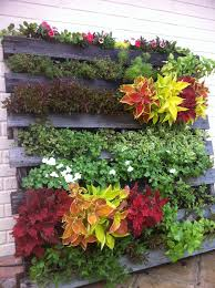 creating a pallet garden u2013 step by step instructions don u0027t poke