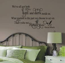 amazon com sirius black harry potter inspired we ve all got light amazon com sirius black harry potter inspired we ve all got light and dark quote vinyl wall decal black by gmddecals 24
