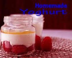 cara membuat yoghurt yang kental cara membuat yoghurt untuk usaha skala rumahan info peluang usaha