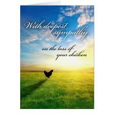 sympathy card chicken sympathy card zazzle