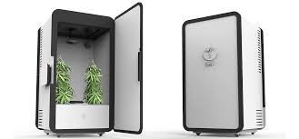 mini chambre de pousse leaf armoire frigo connecte pour faire pousser des plants de