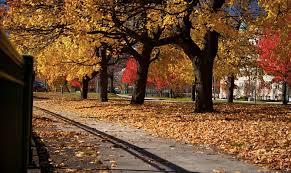 Massachusetts Nature Activities images 5 massachusetts fall events fall events ma fall activities jpg