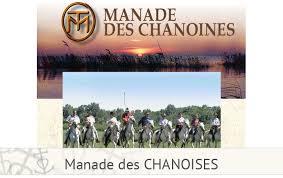 chambre d hote camargue manade safari le gitan en camargue manade des chanoines visiter la camargue