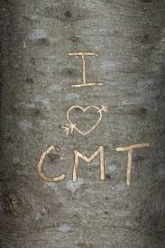 initials carved in tree spare a tree by carving your s initials virtually cool