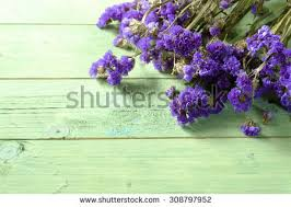 statice flowers beautiful flower on soft background stock photo 408506551