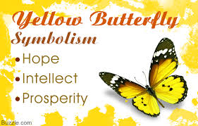 what does a yellow butterfly symbolize you probably don u0027t know