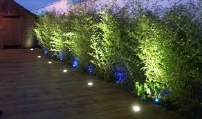 yard landscaping with outdoor lights 25 beautiful lighting