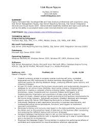 Ssis And Ssrs Resume Resume