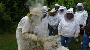 backyard beekeeping workshop st louis earth day