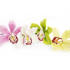cymbidium orchid artificial yellow cymbidium orchid hair clip oriflowers