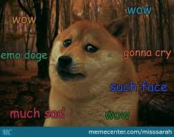 How To Make Doge Meme - doge memes best collection of funny doge pictures