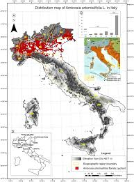 Map Of Genoa Italy by Distribution Map Of Ambrosia Artemisiifolia L Asteraceae In