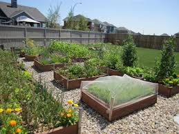 South Florida Landscaping Ideas Impressive Vegetable Garden Florida Vegetable Gardening In South