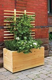 home u0026 garden pea trellis contemporary gardens and bed frames